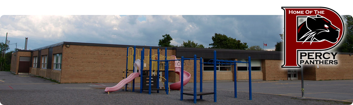 Back Primary Playground